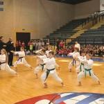 odaberi-sport1 (40)