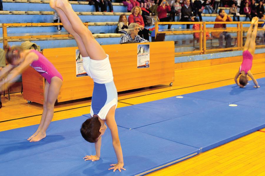 sportska-manifestacija-odaberi-sport